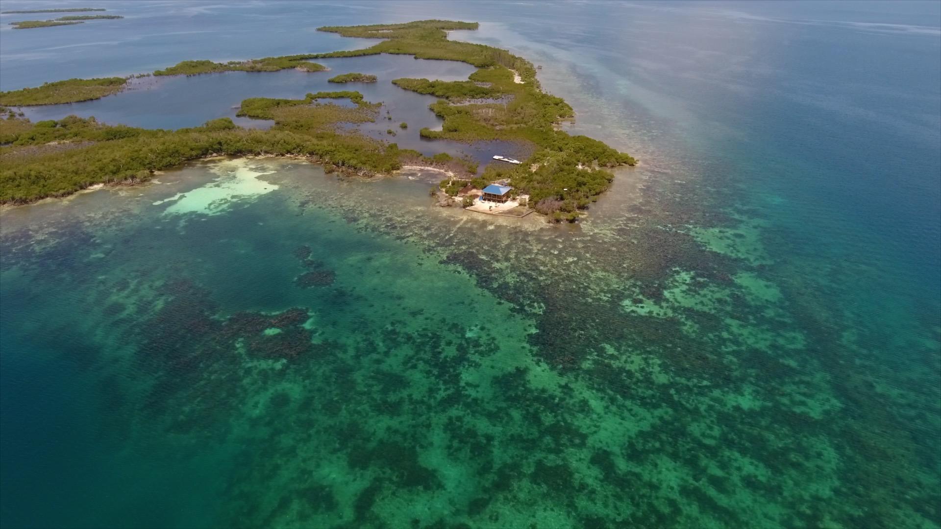 Host Spotlight: Geschäftsmann tauscht Vorstandsetage gegen Inselparadies